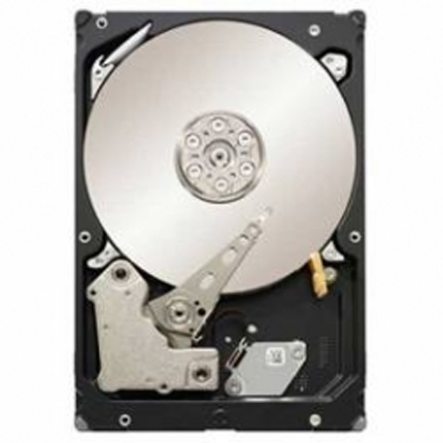 Seagate Constellation ST3500514NS (500GB)